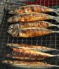 Pesce di Saba sulla griglia del barbecue — Foto stock