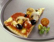 Morceau de pizza salami — Photo de stock