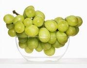 Grappolo d'uva verde — Foto stock