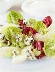 Листья салата с сельдереем — стоковое фото