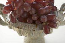 Свіжий червоний виноград — стокове фото