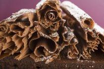Rizos de chocolate en pastel de chocolate - foto de stock