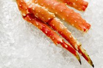 Closeup view of king crab legs on ice — Stock Photo