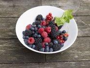Bacche fresche in piatto bianco — Foto stock