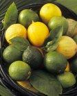 Лаймы и лимоны с листьями — стоковое фото