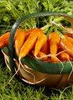 Carote fresche mature — Foto stock