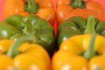 Красочные спелые Bell Peppers — стоковое фото