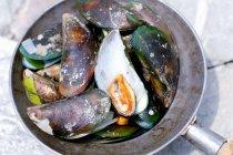 Thailändische Muscheln gekocht — Stockfoto