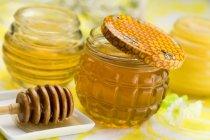 Gläser Honig und Kelle — Stockfoto