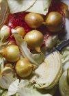 Cipolle e cavolo bianco — Foto stock