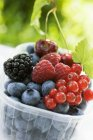 Assorted berries and two cherries — Stock Photo