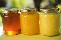 Три банки медовухи — стоковое фото