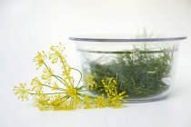 Dill in Glasschale — Stockfoto