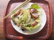 Lettuce with roast duck breast — Stock Photo