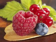 Raspberry with blueberry and redcurrants — Stock Photo