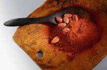 Cacao en polvo y granos de cacao - foto de stock