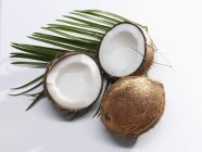 Coconuts whole and halved — Stock Photo
