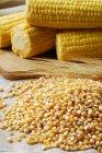 Grãos de milho com orelhas de cereais — Fotografia de Stock