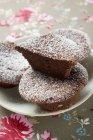 Panini al cioccolato con lo zucchero a velo — Foto stock