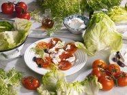 Tomatensalat mit Käse — Stockfoto
