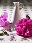 Vue rapprochée d'une pivoine avec vase sur une surface fleurie — Photo de stock