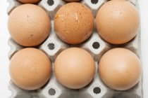 Chicken eggs in cardboard box — Stock Photo