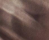 Gros plan de poudre de cacao — Photo de stock