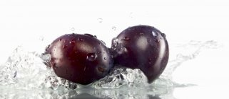 Ciruelas frescas maduras en agua - foto de stock