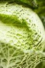 Зелений савойської капусти — стокове фото
