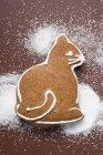 Gato de pan de azúcar - foto de stock