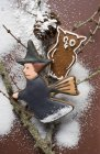 Gufo e strega di Pan di zenzero — Foto stock