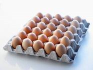 Ovos brancos na bandeja — Fotografia de Stock