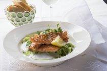 Filetto di salmone su pasta verde del nastro — Foto stock