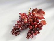 Стиглі червоний виноград з листям — стокове фото