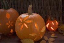 Прикраси з гарбуза ліхтарі — стокове фото