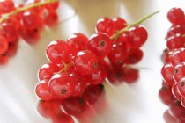 Свіжі стиглі redcurrants — стокове фото