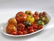 Різні види томатів — стокове фото