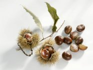 Sweet chestnuts, close-up — Stock Photo