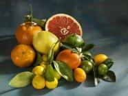 Agrumi freschi e biologici — Foto stock