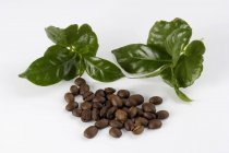 Caffè in grani e foglie verdi — Foto stock