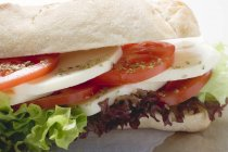 Помідор і сир моцарелла сендвіч — стокове фото