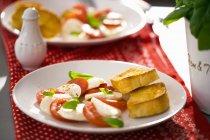 Pomodoro mozzarella e basilico — Foto stock