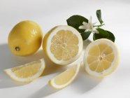 Limoni freschi e maturi — Foto stock