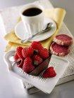 Шоколадный торт с малиной — стоковое фото