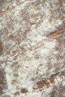 Fresh Rustic bread — Stock Photo