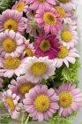 Vista de primer plano de diferentes flores montón - foto de stock