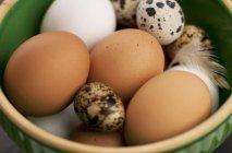 Tigela de ovos de galinha — Fotografia de Stock