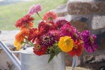 Tagsüber Blick auf bunten Blumen in Gießkanne — Stockfoto