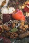 Coni con mele rosse e candela — Foto stock