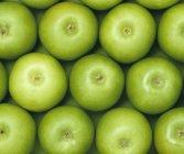 Зелёные спелые яблоки — стоковое фото